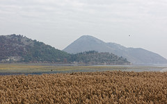 Montenegro 04 (mpetr1960) Tags: autumn sky mountain lake grass landscape nikon europe eu montenegro skadar d810