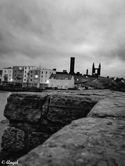 Surrounded by a graveyard (El que retrata) Tags: uk castle history church st andrews catholic cathedral roman medieval bishops