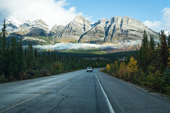 Icefields Parkway (flippers) Tags: road trees mountain snow canada tree snowcapped alberta valley snowcap waterfowllakes
