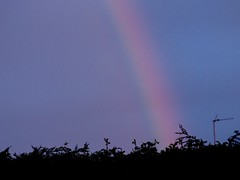 bottom of my garden (nannyjean35) Tags: trees clouds rainbow arial