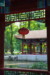 Chinese Lantern (BenKrzanowski) Tags: park trees light red sunlight color building green art architecture garden photography focus colorful exposure flickr outdoor oriental popular
