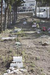 Cuesta. (elojeador) Tags: muro cementerio flor tumba cruz rbol nicho tronco valla tierra bloque hierba lasalpujarras ciprs elojeador tantoolvidarte cementeriodetrevlez