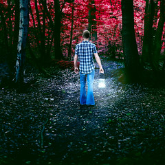 Journey (Logan Fox) Tags: camera blue red people man art forest canon woodland dark walking photography 50mm back moody fineart blonde lantern conceptual tension tense fineartphotography conceptualphotography
