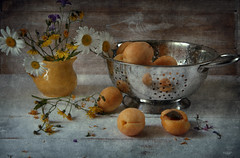 apricot summer (Button-NK) Tags: apricot summer stilllife berries flowers colander