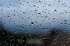 Jour de pluie (Le Tonio) Tags: window rain pluie drop fentre goutte vitre gouttes mlancolie