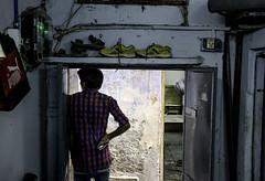 _DSC0330 (bhanu prksh) Tags: photojournalism bagmakers surviving