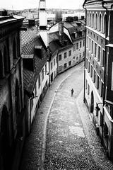 Pryssgrnd, Sdermalm, Stockholm (joeriksson) Tags: citiesofeurope monochrome street bnw cobblestone architecture stockholm people leicaq sdermalm city