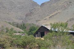 Temperance Creek ranch I (Who am I today?) Tags: idaho snakeriver day20 hellscanyon jetboattour odyssey2015
