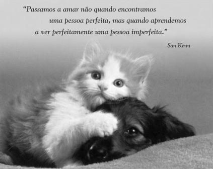 Frase De Amor Y Desamor Jueves 2232012 A Photo On