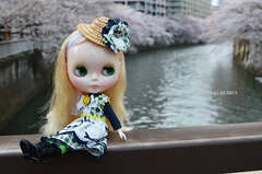 Cold day and cherry blossoms 9