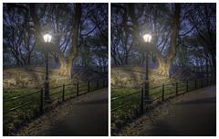 Central Park Lamp Post (-ytf-) Tags: nyc newyorkcity night 3d centralpark manhattan stereo crossview ytf ytfnyc