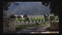 Les beaux jours (cremona daniel) Tags: france nature vacances soleil photo daniel corsica cremona scoopt erbajolo