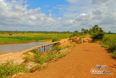 Trail - Khmer Cruiser.jpg