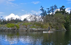 sup28 (vikapproved) Tags: up vancouver island stand whisper bc board paddle columbia victoria evergreen british paddling legend sup