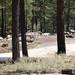 Spencer Campground-2
