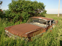 Ditched (David Sebben) Tags: county old abandoned sedan illinois rust sad ditch warren desoto 1959 ditched fourdoor firesweep