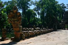 72 Garudas holding a Naga