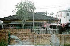 夏前旅行 2012 (我的小風景) Tags: leica m 大湖 苗栗 櫻花 sakurahouse 小旅行
