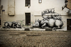 Wild Boars (Tom Cuppens) Tags: street brussels art animal graffiti stencil bruxelles animaux brussel roa