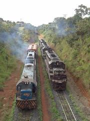 16554 U20C #2535 + U20 #3842 na ala; as DDM45 #818 + 870 + 872 do trem J571 na Linha 1 do ptio de Uberlndia MG (Johannes J. Smit) Tags: brasil vale trens fca efvm