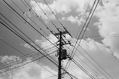 2014.03.21 Yokohama (nobring) Tags: street leica blackandwhite bw film monochrome blackwhite streetphotography 400tx d76 summicron yokohama m3     undiluted bwfp 7n4vju