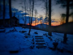 IMG_7742 (FleeterClaye) Tags: cahas kennel snow sunrise