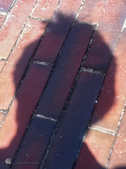 Portrait (gerhard.wolff2016) Tags: shadow portrait selfportrait abstract me face gesicht explore footpath schatten selbstportrait kiel uksh fusweg