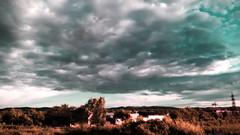 Periphery (Lumia Life Moments) Tags: wild sky nature contrast filter xl vilage 640 periphery lumia