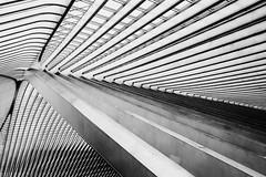Archi Lines and Curves. (kitchou1 Thanx 4 UR Visits Coms+Faves.) Tags: world bw art architecture season spring europe belgium nb trainstation minimalism printemps saison