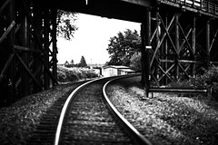 On track (fRawnco) Tags: bridge blackandwhite bw monochrome digital train prime washington nikon outdoor tracks 85mm fixed dslr d810