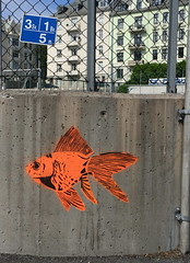 Fish (svennevenn) Tags: fish streetart stencils bergen fisk mhlenpris gatekunst
