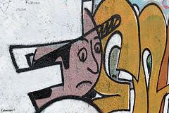 CrueSeine_0028 (cyberien 94) Tags: streetart seine graffiti paysage marne valdemarne alfortville confluent ivrysurseine charentonlepont