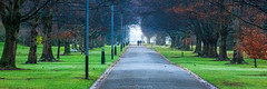 Winters Morning Stroll (grantg59@xtra.co.nz) Tags: park morning trees winter people cold grass misty path stroll