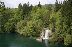 Croatia (Yann OG) Tags: croatia croatie plitvice lac lake nationalpark cascade waterfall chutedeau arbre tree sapin sigma30mm nature paysage landscape vert green poselongue longexposure nd400
