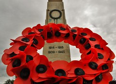 Poppy Wreath (howell.davies) Tags: world uk flowers color colour history swansea wales composition nikon war first battle wreath poppy 1855mm cenotaph somme d3200