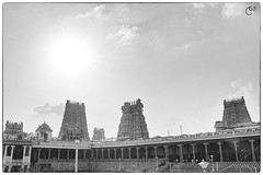 Meenakshi Amman Temple Towers