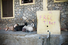 Free Tibet - Pokhara, Nepal (Ann McLeod Images) Tags: nepal nikon pokhara d90 nikond90 annmcleodimages