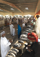 Fish market in Sinaw, Oman (Eric Lafforgue) Tags: oman arabia penisulearabique arabianpeninsula traveldestination sina sultanat sultanate nikab niqab burka burqa voile veiled muslim femme woman veil marche market souk bedouin omanais omani souq bedu vertical photocouleur colorpicture colourpicture photoenpied fulllength dedans inside indoors interior vueinterieure islam interieur musulman people sinaw bedouine beduin arabie 4459216  om omaan   omn    omna omanas omo umn  umman