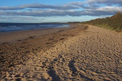 PRESTONPANS BEACH (joemor2) Tags: sea beach water coast scotland sand britishseascapes