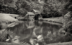 Mabry Mill and pond (loco's photos) Tags: trees blackandwhite bw mill nature water monochrome forest landscape outdoors virginia pond scenery pentax most software nik kr photographed blueridgeparkway grist mabry mabrymill meadowsofdan dal1855 silverefex2