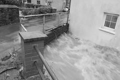 DSC_0020 (tanwen_haf) Tags: water ceredigion floods talybont dr llifogydd