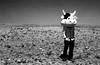 Oh, who would ever want to be King? (Irene Stylianou) Tags: blackandwhite bw film field analog 35mm 50mm cow europe fuji coldplay song cyprus mascot filmcamera fujica analogphotography larnaca songlyrics filmphotography cowhead 50mmlens 3cows lomographyfilm vivalavida xfujinon coldplaysong fujifilmcamera filmdatabase fujilens fujiaxmultiprogram irenestylianou fujicaaxmultiprogram xfujinon119f50mmdm fujinon119f50mm