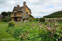 Stokesay Castle (Holfo) Tags: uk flowers england house building architecture garden nikon shropshire box outdoor chocolate cottage perspective manor statelyhome englishheritage stokesaycastle salop d7000