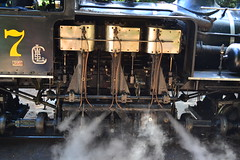1911 steam power in action (Ian E. Abbott) Tags: train steam felton redwoods roaringcamp steamengine steamtrain steamlocomotive redwoodforest steampower feltoncalifornia narrowgaugerailway roaringcamprailroads narrowgaugerailroad feltonca limalocomotiveworks loggingtrain narrowgaugelocomotive steamtraintour logginglocomotive redwoodforeststeamtrain sonorashay sonoraengine7 limasteamengine redwoodforesttrain