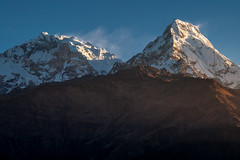 Nepal Morning (Walter Quirtmair) Tags: morning blue nepal light white snow mountains peak himalaya annapurna ssky 500px ifttt quirtmair