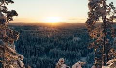 Brattforsberget, Jmtland, Sweden (DrowsyPotato) Tags: sunset color film zeiss landscape colours fotograf kodak sweden mark sony sunsets 55mm ii carl 100 sverige mm fe alpha f18 scandinavia za svensk 550 landskap 140 ektar swe mirrorless a7r 42mp 160 a7rii ilce7rm2