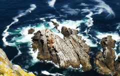 TRILOGA ESPECIAL...MAR, ROCAS Y GAVIOTAS (Montse;-))) Tags: mar gaviotas pap rocas regalito