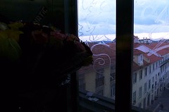 voici donc les roses (*F~) Tags: birthday roses portugal lisboa elevator human clair obscur ascencion