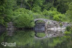 Park Serenity (cjb_photography) Tags: bridge toronto water waterfall pond rocks highpark torontolife torontophoto torontoclicks