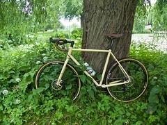 iconX_  20162016-06-1314-10-09 (C_Baltrusch) Tags: olive crossroad crossbones kafue madeofsteel stahlrad veloheld iconx bikespresso